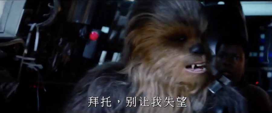 Chewie on the falcon