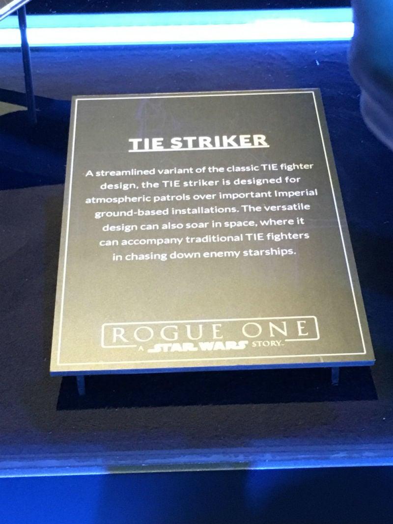striker description