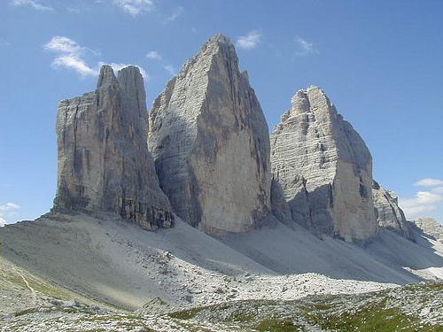 Tree Peaks